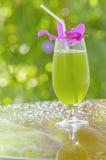 混合蔬菜汁 免版税图库摄影