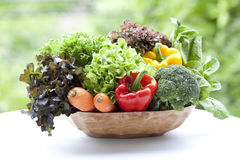 混合蔬菜 库存图片