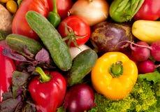 混合蔬菜 图库摄影