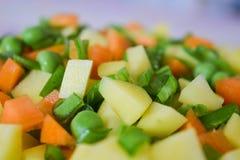 混合裁减菜-土豆红萝卜豌豆扁豆 免版税库存照片