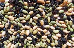 混杂的坚果、坚果的自然产品、变异和五谷用豆 免版税库存图片