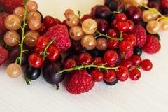 混杂的夏天莓果莓,黑醋栗,红醋栗,白色无核小葡萄干,鹅莓,在白色背景的樱桃 免版税库存图片