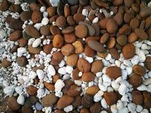 混杂的小棕色和白色石头纹理 免版税库存图片