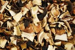 混杂的干蘑菇顶视图  免版税库存照片