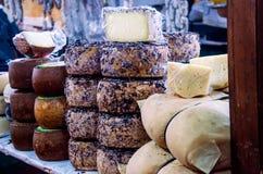 混杂的意大利乳酪的陈列 库存图片