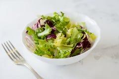 混杂的新鲜蔬菜沙拉(绿色卷心莴苣、拉迪基奥和frisee)在白色碗 免版税库存照片