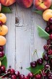 混杂的果子和莓果框架 库存照片