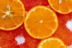 混杂的柑橘切了†‹â€ ‹果子 桔子和葡萄柚 库存照片
