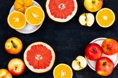 混杂的欢乐五颜六色的热带和柑桔切在bla 免版税库存图片