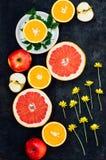 混杂的欢乐五颜六色的热带和柑桔切在bla 免版税库存照片