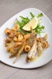 混杂的油煎的鱼的部分 免版税库存图片
