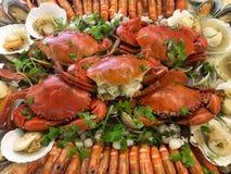 混杂的海鲜大宴餐在一个非常大罐的 免版税库存照片