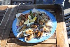 混杂的海鲜盘 免版税库存图片