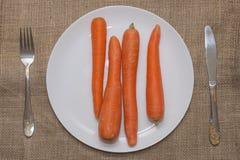 混杂的牌照蔬菜 免版税图库摄影