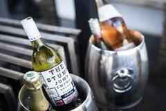 混杂的瓶在冰致冷物的食家酒用桶提 库存图片