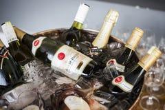 混杂的瓶在冰致冷物的食家酒用桶提 免版税图库摄影