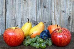 混杂的秋天果子 图库摄影