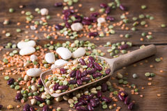 混杂的种子豆类 图库摄影