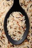 混杂的米(煮半熟,狂放,褐色 库存照片
