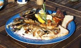 混杂的肉和海鲜盘 免版税库存照片