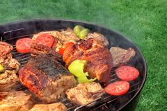 混杂的肉和菜在热的BBQ格栅 免版税图库摄影