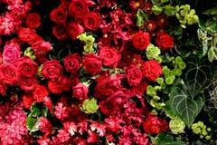混杂的花的布置 五颜六色的mixe花束花 免版税库存图片