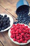 混杂的莓果 免版税图库摄影