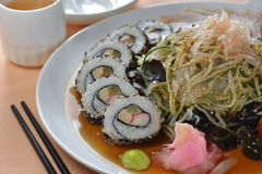 混杂的菜寿司盛肉盘 免版税库存照片
