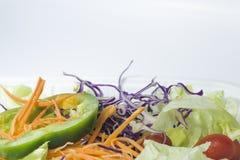 混杂的菜沙拉 库存照片