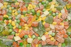 冻混杂的菜 免版税库存图片