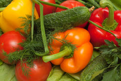 混杂的蔬菜 免版税库存图片