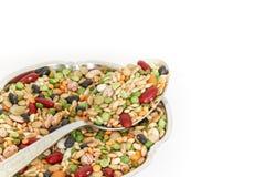混杂的豆类和谷物 免版税库存图片