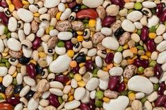 混杂的豆 免版税图库摄影