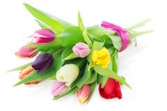 混杂的郁金香花束  免版税库存照片