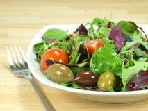 混杂的婴孩蔬菜沙拉 库存图片