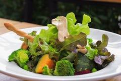 混杂的水栽法菜沙拉 库存图片