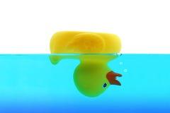 淹没鸭子 免版税库存照片