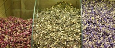 清凉茶和干草本 库存图片