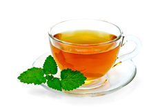 清凉茶用蜜蜂花 免版税库存照片