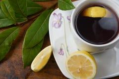 清凉茶 库存图片