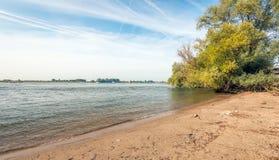 清早一条宽荷兰河的河岸 免版税库存图片