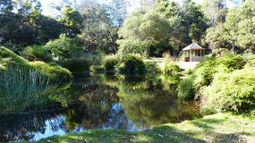 清早反射斯科茨代尔塔斯马尼亚岛,澳大利亚 免版税库存照片