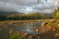 清早在海地的乡下 免版税库存图片