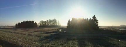 清早在立陶宛 2016年3月 免版税库存照片