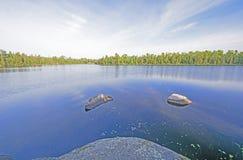 清早安静在北部森林 库存图片