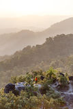 清早山风景与雾的观察点在Umphang 湄宏顺府,泰国 库存照片