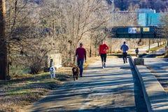 清早步行者、赛跑者、慢跑者和狗步行者罗阿诺克河林荫道路的 免版税库存照片