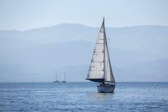 清早航行在风通过波浪 免版税库存照片