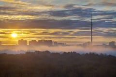 清早黄色城市日出和雾 免版税库存照片