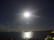 清早moonset,穿戴树荫! 库存图片
